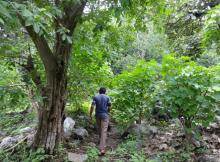 Diversion of forest land is one of the biggest concerns for villagers dependent on forests.