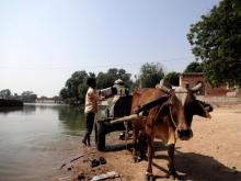 Small ox-driven tankers offer home delivery of water from Lakholaav pond. Source: GOI Monitor