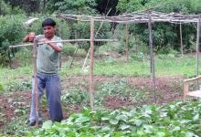 जैविक खेती में विकलांगों का योगदान हैरानी उत्पन्न करता है