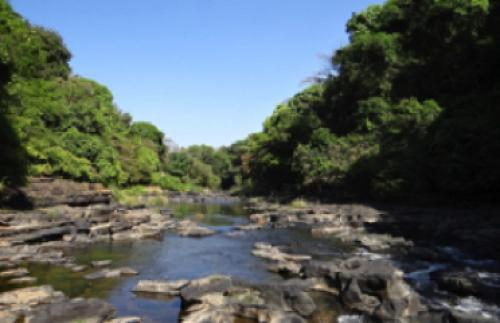 Mhadei or Mandovi river is a lifeline of Western Ghats. Source: Pixabay