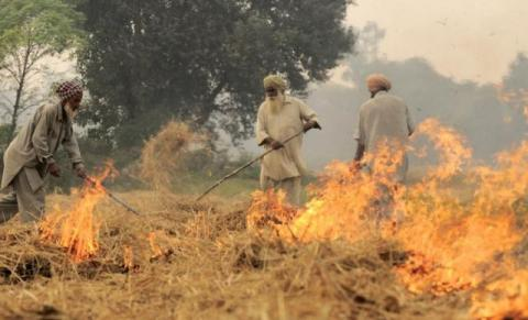 Farmers burning straw in Punjab. Source: Neil Palmer Wikimedia Commons