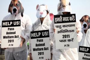 how to become a member of peta india